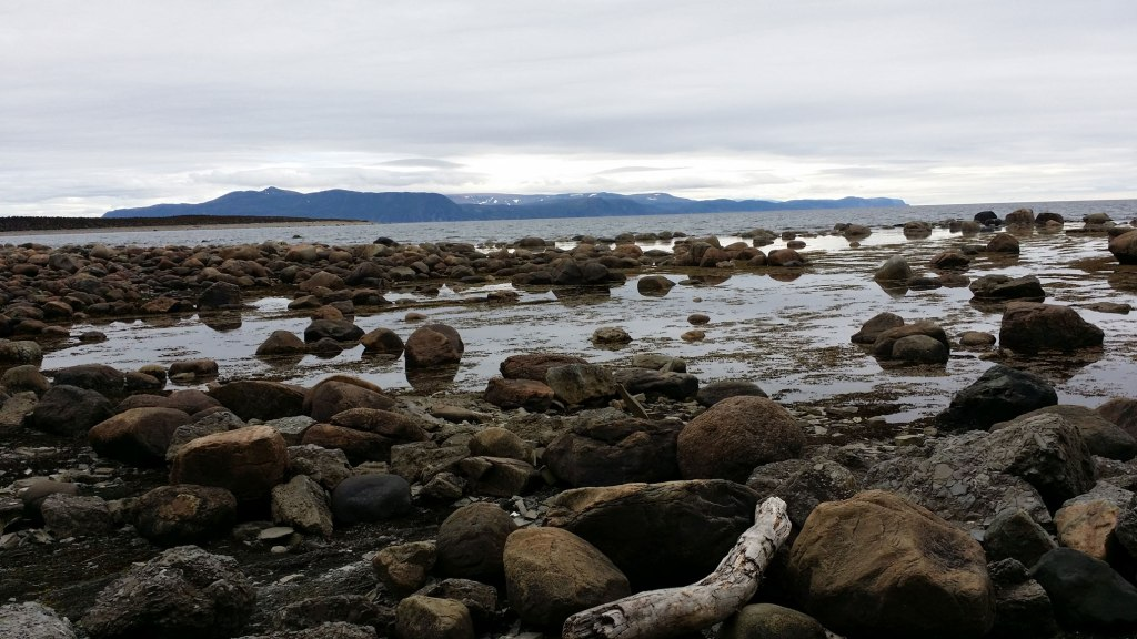Looking out from the shore at Green Point, June 22 2014. Image courtesy ME Cooke.