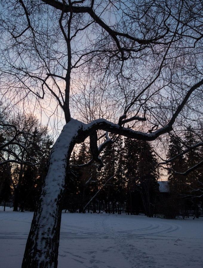 dusk1.jpg