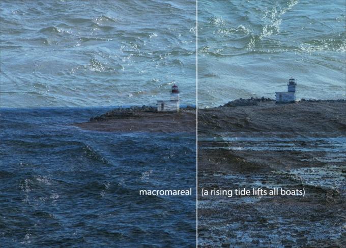 Small-Postcard-macromareal1-01