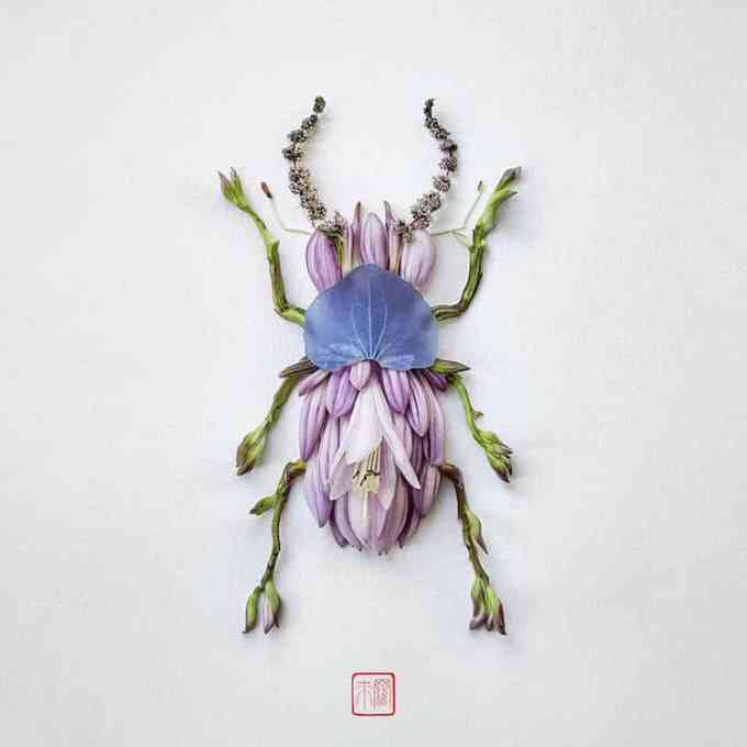 Natura Insects – Insects made of Flowers